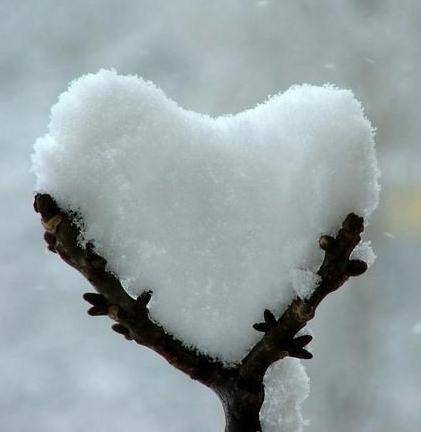 cuore-di-neve