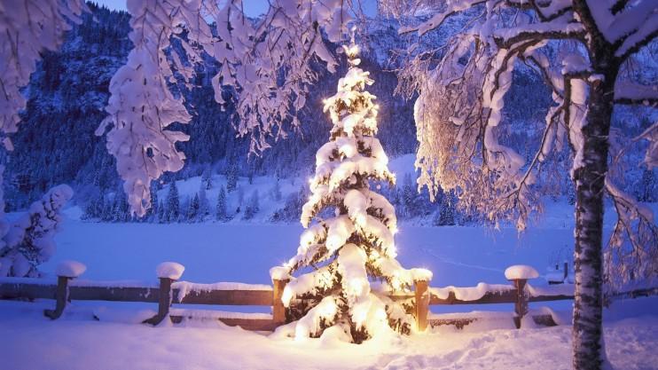 albero_natale_con_neve