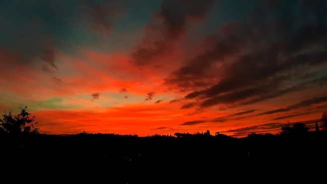 aurora fiorentina